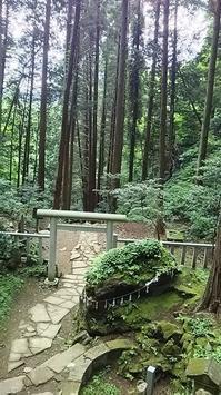 茨城県  2泊3日 ゴルフ&観光 - 遊ぶろうぐ