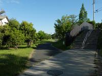 初夏散歩 - Wakaba photos