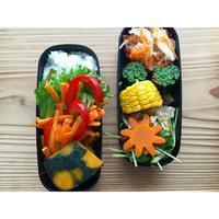 鶏胸肉香味和えBENTO - Feeling Cuisine.com
