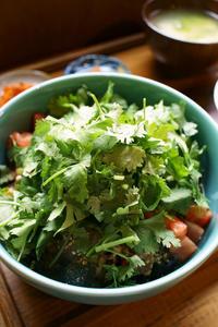 Okinawa Soba EIBUN 夏の麺 - ちゅらかじとがちまやぁ