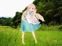 MMD「今日歩いた散歩道 & 花菖蒲 『不知火』 が咲きました」 - 孤影悄然