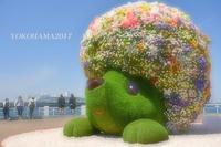 ガーデンの妖精『横浜』 - 写愛館