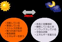 7/1 セルフケア講座の詳細① - WONDERLAND Aromatherapy Healing