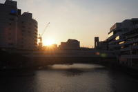 横浜そしてMM21 - Free Shot ほっと一息