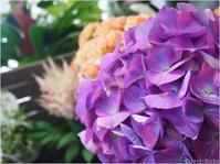 季節を楽しむ。梅雨と花仕事6のおまじない。 - ルーシュの花仕事