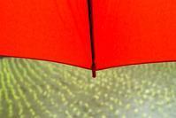 赤い傘と薪ストーブ・マッキー・・・今日のカエル君。 - 朽木小川より 「itiのデジカメ日記」 高島市の奥山・針畑郷からフォトエッセイ