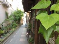 京都路地裏ポタ - 神戸ポタリング日記