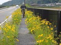 マウンテンバイクと船で竹生島へ  琵琶湖にて - 峰さんの山あるき