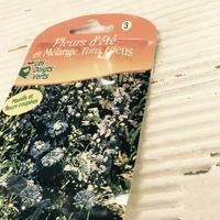 フランスの花のタネ - FRASCO DIARY