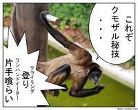 動物実写1コマ漫画-クモザル秘技の巻- - 思い出に変わる日々