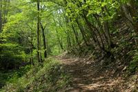 自然の中を歩く - 新天地はコの字型!