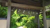 下田温泉こむらさきに宿泊してきました - ゆったり まったり のんびりと