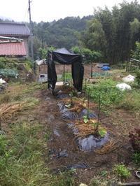 続いては - 熊野町民 超絶・翔平!がいく広島探索日記