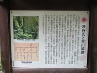 城山公園を散歩しました - つれづれ日記