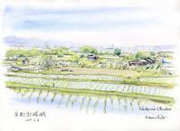 北嵯峨の水田風景 - 風と雲