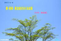 2017-4~6-(その1) 春・信州∼東北地方のくるま旅【南信編】 - 日本全国くるま旅