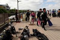 17.6.8 〇〇からの~ - 沖縄本島 島んちゅガイドの『ダイビング日誌』