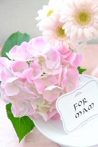母に送る花の夢 - 不完全なマル
