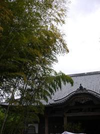 お寺でゆっくり。 - 山と古楽と月明かり