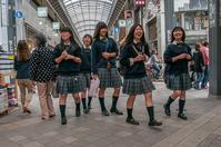 記憶の残像 2017年 花の東京 -11 台東区 浅草 -2 - ある日ある時 拡大版