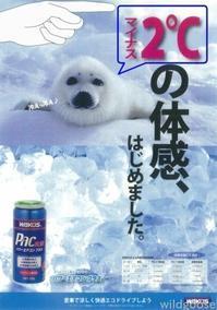 ★☆WAKO'S パワーエアコン PAC PLUS☆★ - ★豊田市の車屋さん★ワイルドグース日記