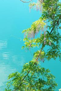 三湖物語'17 初夏#1 - 但馬・写真日和