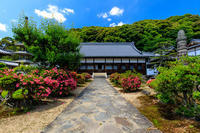 青空とサツキの興聖寺 - 花景色-K.W.C. PhotoBlog