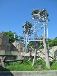 札幌円山動物園 - Sorekara・・・