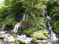 吐竜の滝 - 八ヶ岳 革 ときどき くるみ