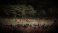 体育祭(運動会) - いけのさい~子育てと教育の一隅を照らす