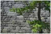 江戸城の石垣 -  one's  heart