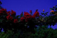 満月光b - 雲空海