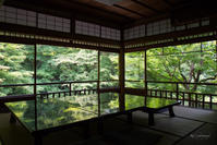 青紅葉  瑠璃光院(京都) - My diary
