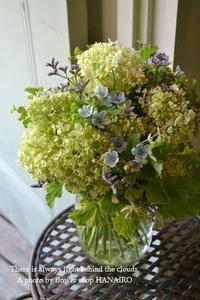 フィレオフィッシュは青春の味!と言っても過言ではないのだ。 - 花色~あなたの好きなお花屋さんになりたい~