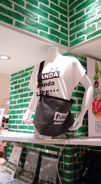 東急ハンズ梅田店『パンダと猫の雑貨展』新作到着。たっぷり作品紹介 - 雑貨・ギャラリー関西つうしん