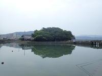 名勝和歌の浦クリーンアップ 奠供山と鏡山 - 名勝和歌の浦 玉津島保存会