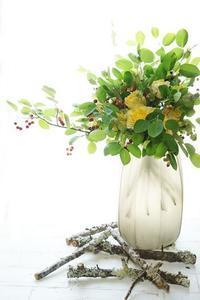 撮って出しシャンぺトル - お花に囲まれて