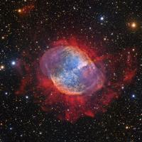スバル望遠鏡が捉えたこぎつね座の美しい惑星状星雲M27 - 秘密の世界        [The Secret World]