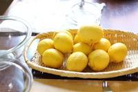 レモンシロップと。。。プレゼントの応募締めきりました☆ - キラキラのある日々