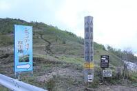 2017 野反湖 シラネアオイ - さんたの富士山と癒しの射心館