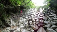 『yと山登り』 羽鳥峰→金山→中峠→水晶岳→根ノ平編  - 或岩松枝諏のダンディ