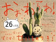 """続々々々々々々々々・""""うさぎちゃん""""と""""多肉うさぎちゃん""""。 - maki+saegusa"""