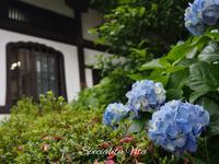 鎌倉で同期会@空花 - Specialita VitaⅡ