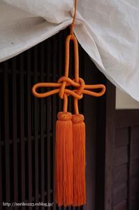オレンジ色 - Noriko's Photo  -light & shadow-