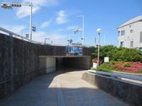 鎌倉ライド&ハイク 2 江ノ島 - じてんしゃでグルメ!  2
