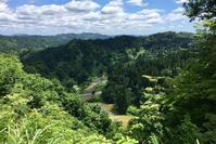 (6月だけど)五月晴れ - 松之山の四季2