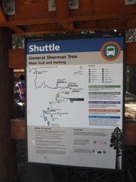 お一人様旅行その4再びGeneral Sherman Tree@Sequoia National Park - 気ままなLAヴィンテージ生活