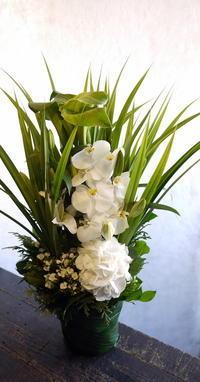 亡くなられたお母様へ。「大きすぎず、白とグリーンで」。菊水6条にお届け。2017/06/05。 - 札幌 花屋 meLL flowers