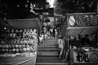 Torigoe Shrine - Slow Photo Life