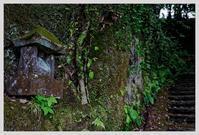 大分・普光寺 - ■MAGの写真創庫■
